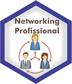 logo curso NETWORKING PROFISSIONAL categoria-1